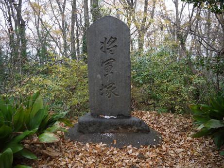 20150117_syougunzuka