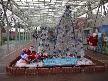 20150118_merry_christmas