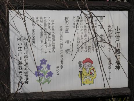 20150129_sitifukujin_setumei