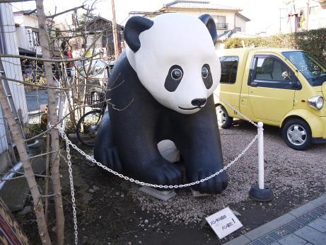 20150219_panda