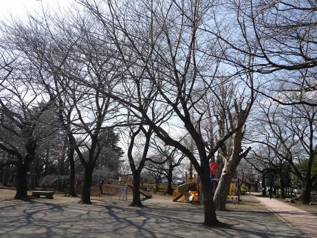 20150227_kounosu_park_1