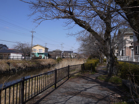 20150313_kusagawa_7