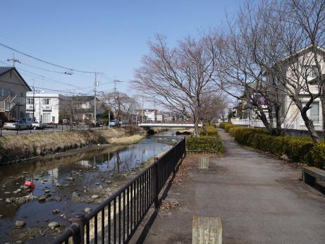 20150313_kusagawa_8