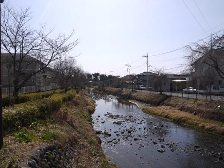 20150313_kusagawa_9