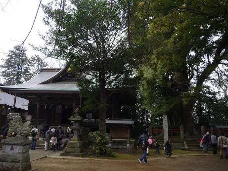 20150320_kouzaki_jinjya