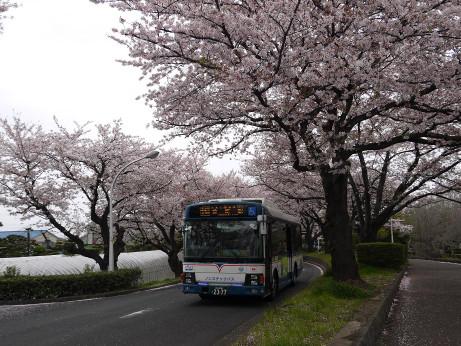 20150407_jyunkan_bus