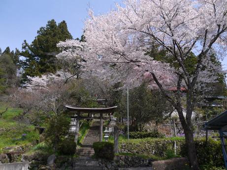 20150423_torii_2
