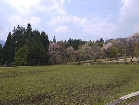 20150512_park_1