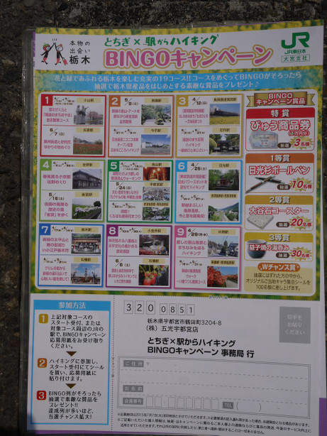 20150521_bingo_camp