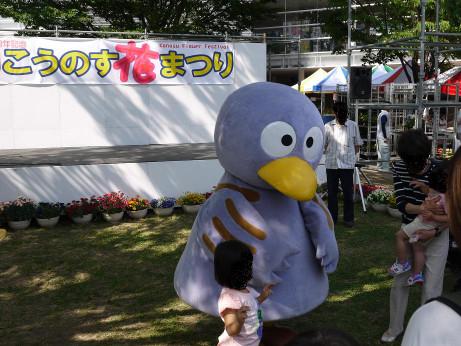 20150528_kobaton
