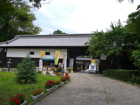 20150628_nagayamon