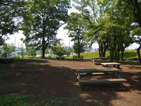 「西初石近隣公園」の画像検索結果