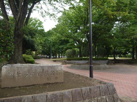 20150728_park_01
