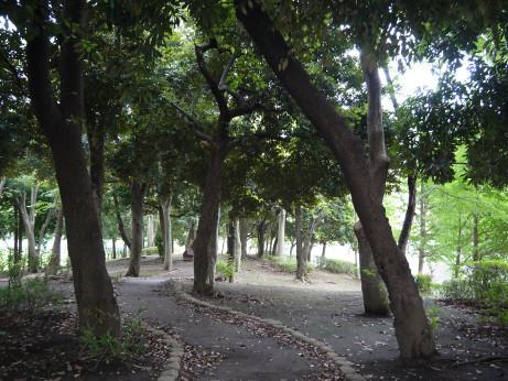 20150728_park_03