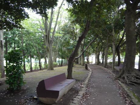 20150728_park_04