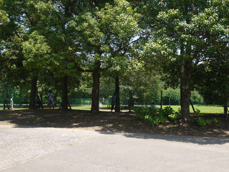 20150801_park_5