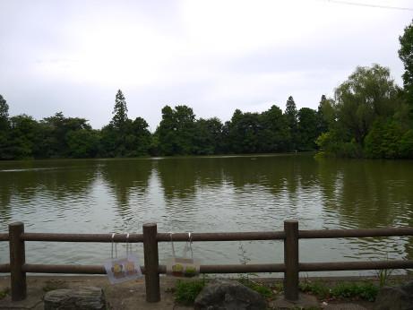 20150807_lake_3