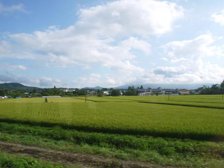 20150817_hanawa_line_6