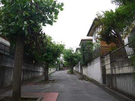 20150905_road12