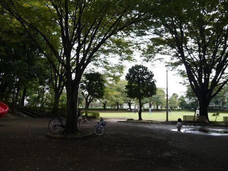 20151001_myoubana_park_4