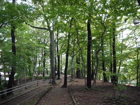 20151016_park_4