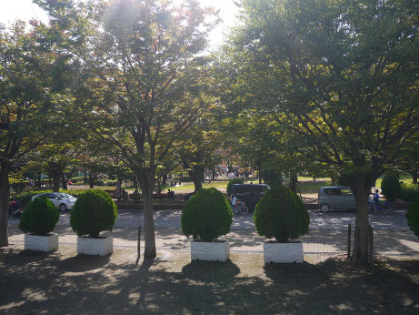 20151019_park_2