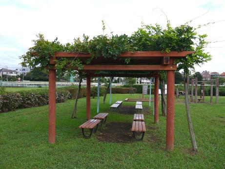 20151021_bench