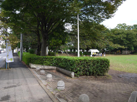 20151022_myoubana_park_1