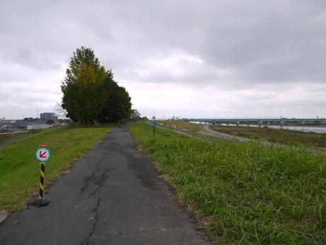 20151125_tonegawa_3