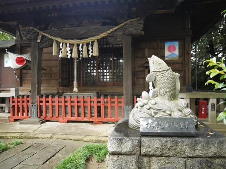 20151203_koi