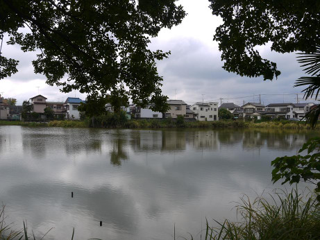 20151204_houjidoike_2