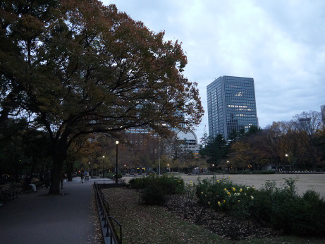 20151207_park