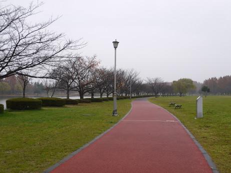 20151215_park_1