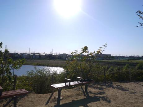 20151220_minami_park_08