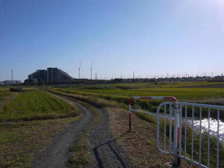 20151221_road_2
