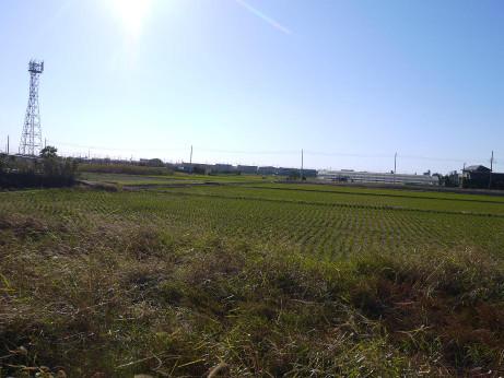 20151221_tanbo_1