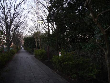 20160104_road_1