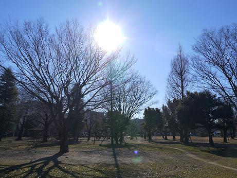 20150111_waseda_park