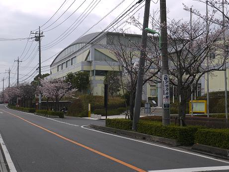 20160414_sougou_taiikukan