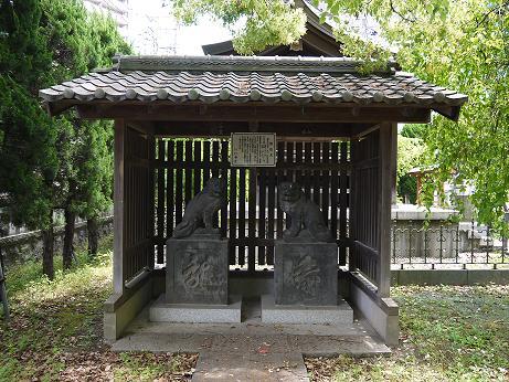 20160520_kyukomainu