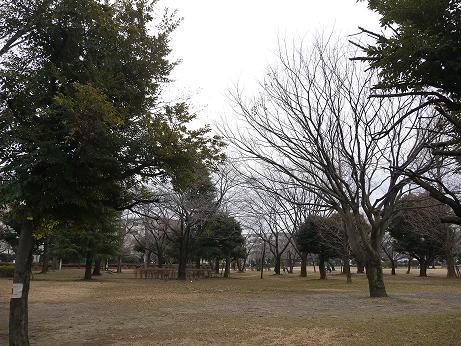 20170109_waseda_park