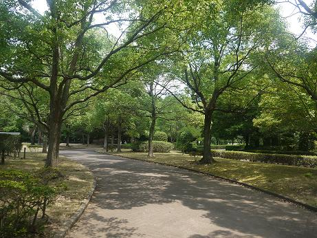 20170728_park_2