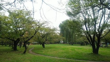 20181030_park