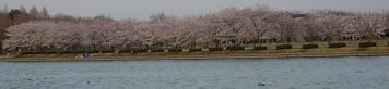20060402_misatokawa