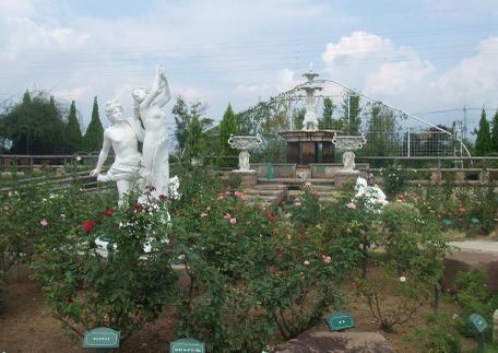 20100925_garden