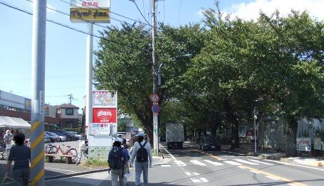 20101016_sakura_douri