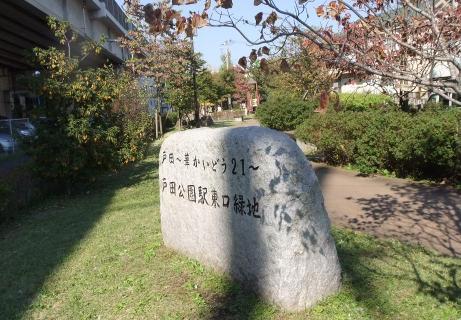 20101113_ryokuchi