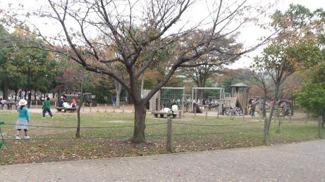 20101118_park1