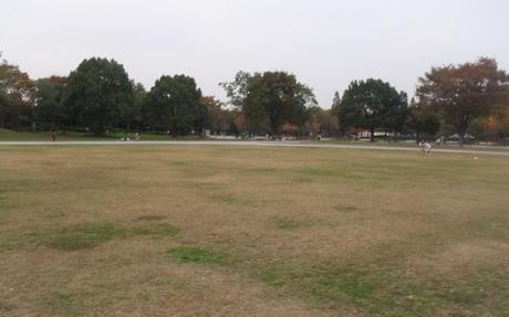 20101118_park2