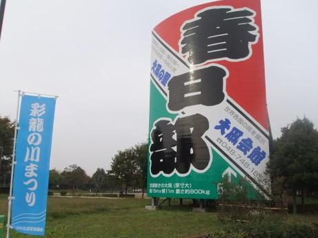 20101118_tako